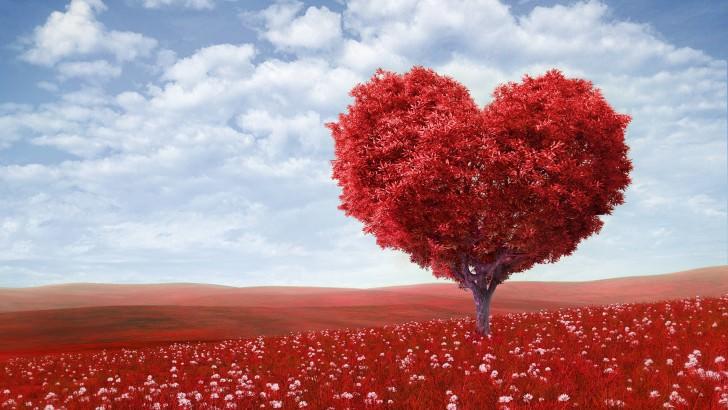 любов, партньорски отношения